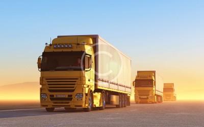 На дорогах Украины установили круглосуточный весовой контроль